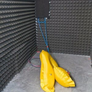The first phase of the destructive burst test. Swim bladders are inflated in a sound-proof chamber until ...